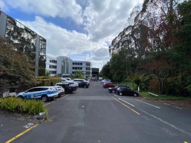 Full Floor Fitout Offices Property for Lease Grafton Auckland