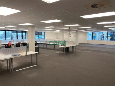 Motorway Exposure Offices for Lease Grafton Auckland