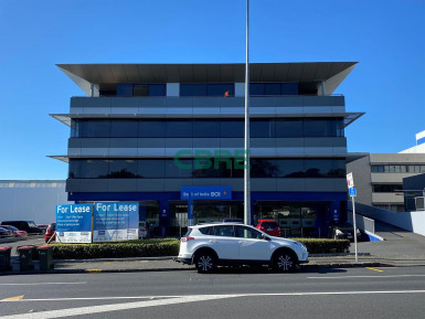 Offices Property for Lease Epsom Auckland