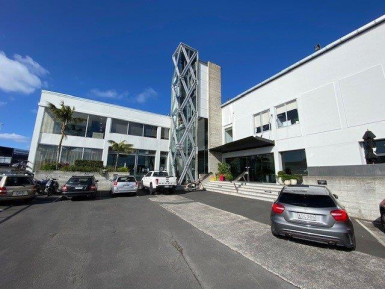 Studio Space for Lease Kingsland Auckland