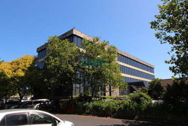Superb Springs Road Offices  for Lease East Tamaki Auckland