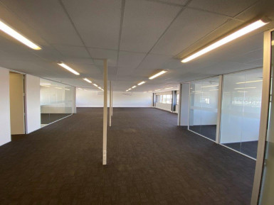Top Floor Newmarket Office for Lease Auckland