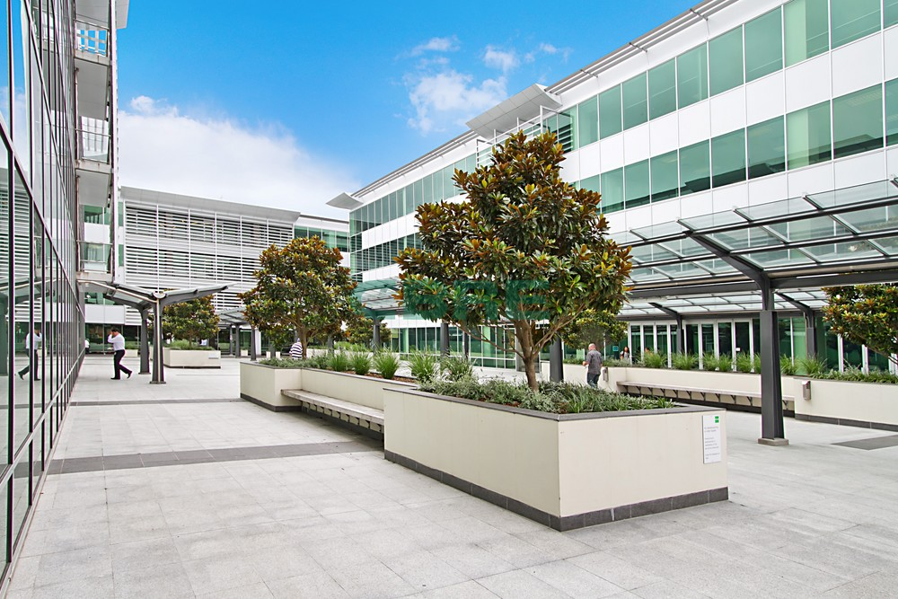 Dynamic Offices  for Lease Greenlane Auckland