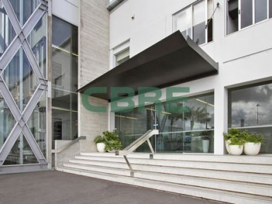 High Calibre Offices  for Lease Kingsland Auckland