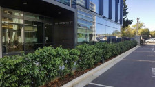 New Offices Property for Lease Christchurch Central