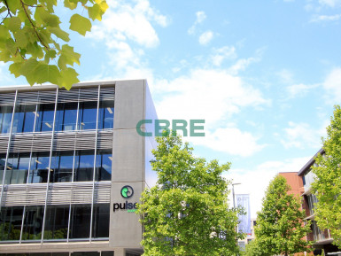 Ground Floor Offices  for Lease Auckland Central