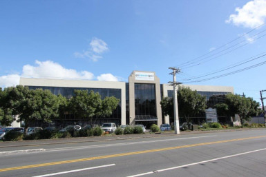 Well Positioned Offices  for Lease Penrose Auckland